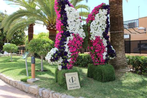 Springtime for Sunseeker Mallorca: Exotic Botany exhibition in Puerto Portals
