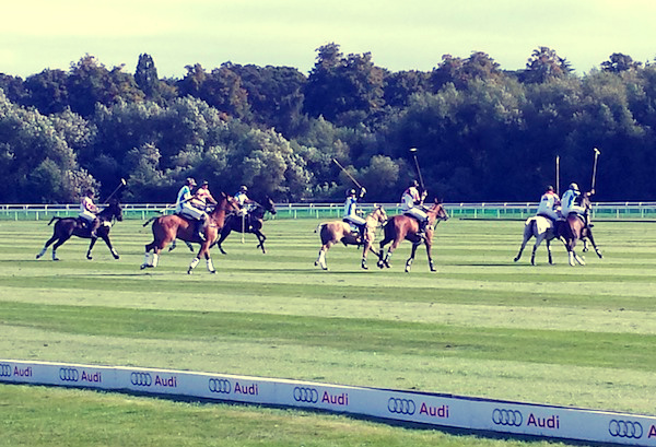 Sunseeker Cheshire attended the Audi Polo Challenge at Chester Racecourse
