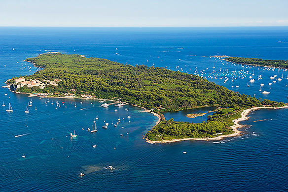 The Iles de Lerins are easily reachable from Port Camille Rayon, just an hour's cruise away